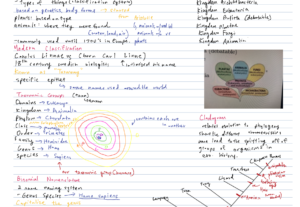 21295Taxonomy Notes (PAP Biology)