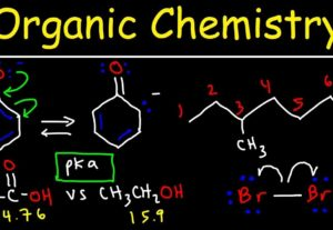 19540Organic Chemistry 1 – I WILL DO YOUR ASSIGNMENTS 5/5 rated private tutor 4+ years experience