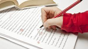 50057Essay editing/proofreading and suggestions for improvement.